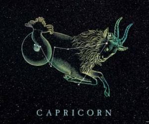 capricorn karma