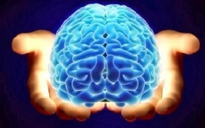 beyond human aura human brain