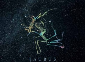 sign of Taurus