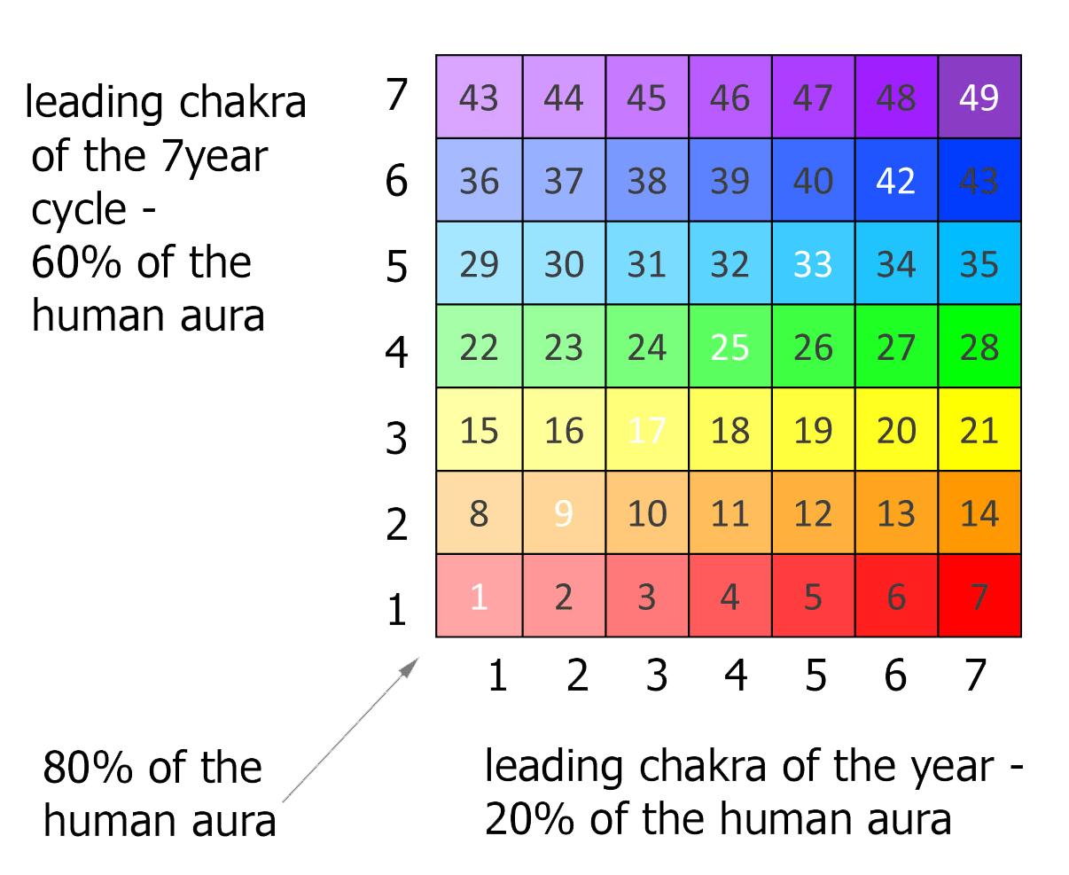 chakra 7 year life cycle